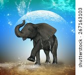 cute baby elephant playing with ... | Shutterstock . vector #267163103