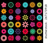 different patterns of flower... | Shutterstock .eps vector #267173918