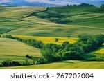 landscape in tuscany | Shutterstock . vector #267202004