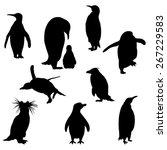 set of the penguins silhouettes.... | Shutterstock .eps vector #267229583