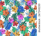 pattern of hibiscus | Shutterstock .eps vector #267243233