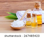 natural spa ingredients .  ...   Shutterstock . vector #267485423