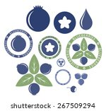 blueberry. set. vector... | Shutterstock .eps vector #267509294