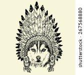 husky dog portrait with native... | Shutterstock .eps vector #267568880
