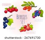 berry  ripe  bright  set | Shutterstock .eps vector #267691730