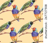 seamless pattern with gouldian... | Shutterstock . vector #267727508