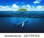 beautiful island with palm... | Shutterstock . vector #267759764