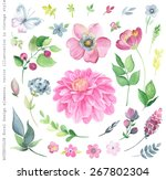 collection of watercolor floral ... | Shutterstock .eps vector #267802304
