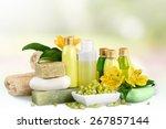 cosmetics  bar of soap  nature.   Shutterstock . vector #267857144