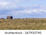 Wooden Bird Watching Hut Spurn...