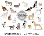 Stock vector set of flat sitting or walking cute cartoon dogs and cats vector illustration 267948263