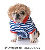 Dog Dressed Up Like A Human...