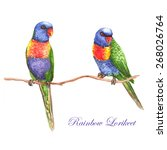 hand drawn watercolor... | Shutterstock .eps vector #268026764