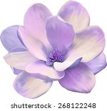 vector illustration of... | Shutterstock .eps vector #268122248