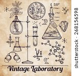 hand drawn science beautiful... | Shutterstock .eps vector #268156598