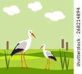 illustrations heron in the... | Shutterstock .eps vector #268214894