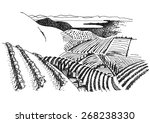 vineyard landscape ink pen... | Shutterstock .eps vector #268238330