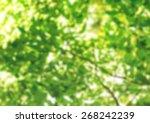 finger  fun  paint. | Shutterstock . vector #268242239
