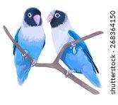 Pair Of Blue Masked Lovebirds....