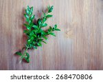 branch of box tree over wooden... | Shutterstock . vector #268470806