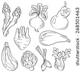 vegetables | Shutterstock .eps vector #268501463