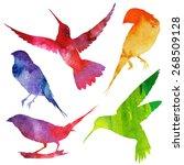 birds silhouette. watercolor...   Shutterstock .eps vector #268509128
