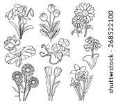 flowers | Shutterstock .eps vector #268522100