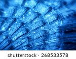 Macro Of Blue Sea Shell Texture