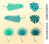 set of tropical palm leaves.... | Shutterstock .eps vector #268625894