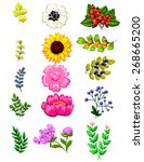 flower set | Shutterstock .eps vector #268665200