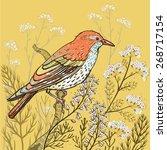 vector hand drawn illustration... | Shutterstock .eps vector #268717154