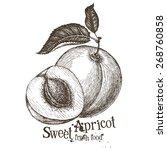 Apricot Vector Logo Design...