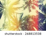 different palm trees  view from ... | Shutterstock . vector #268813538