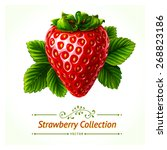 strawberry  leaves and berries... | Shutterstock .eps vector #268823186