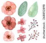 set of flower and leaf... | Shutterstock . vector #268852898