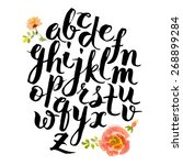 hand drawn alphabet written... | Shutterstock .eps vector #268899284