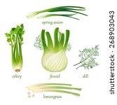 set of vector herbs.  isolated... | Shutterstock .eps vector #268903043