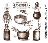 vector set of ink hand drawn... | Shutterstock .eps vector #268919174