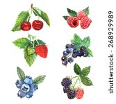 watercolor berry set with... | Shutterstock .eps vector #268929989