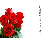 Stock photo beautiful red roses on a white background with space for copy 2689469