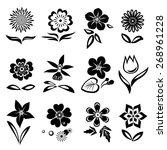 Chamomile  Primula   Anemone ...
