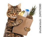 funny cat in the store | Shutterstock . vector #269070080