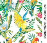 parrots and exotic flowers.... | Shutterstock .eps vector #269081228