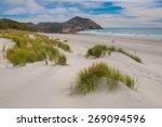 Sand Dunes And Grass Vegetatio...
