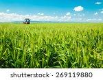 Spraying Wheat Crops Field