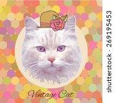 vector vintage cat with cap   Shutterstock .eps vector #269195453