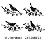 Birds On Branches. Nature And...
