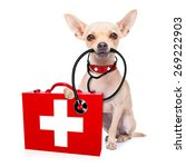 Stock photo chihuahua dog as a medical veterinary doctor with stethoscope and first aid kit isolated on white 269222903