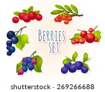 berry  ripe  bright  set  black ... | Shutterstock .eps vector #269266688