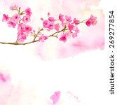 Pink Background With Branch Of...